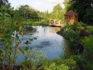 Pond and Sun House 3