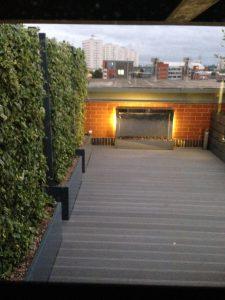 Rooftop Garden 4