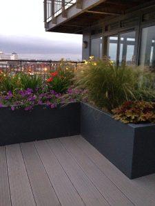 Rooftop Garden 10