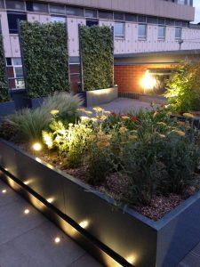 Rooftop Garden 1