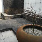 Contemporary Garden 11