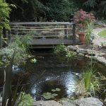 Garden Design in North Wales