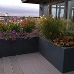 Garden Design in Shawbury