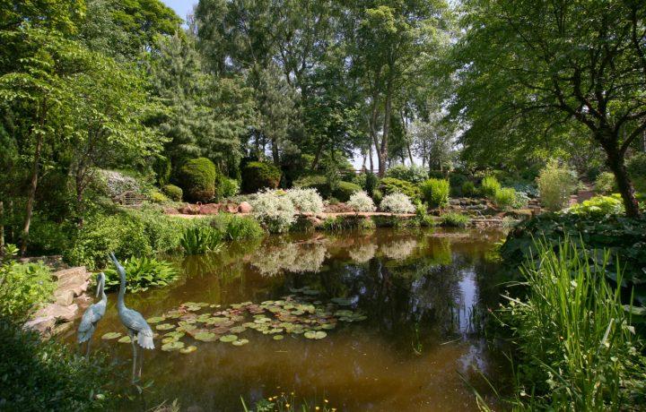 Landscape Design in Cheshire